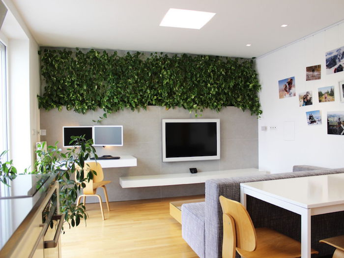 kompaktes Wohnzimmer, Arbeitszimmer und Esszimmer mit Efeu Dekoration Zimmerpflanzen schattig