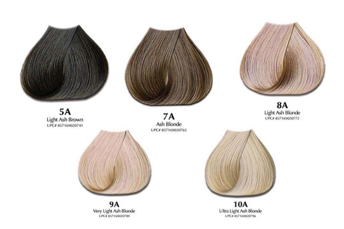 Asch-Nuance von Blond und Braun, Haarfarbe-Palette, künstliche Haare