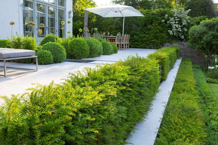 garten gestalten, hintergarten mit keramikfliesen und vielen grünen büschen