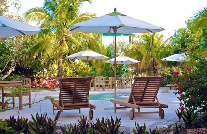 gartengestaltung ideen, garten mit schwimmbad und palmen