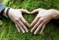 Umweltschutz im Haushalt: naturfreundlich leben