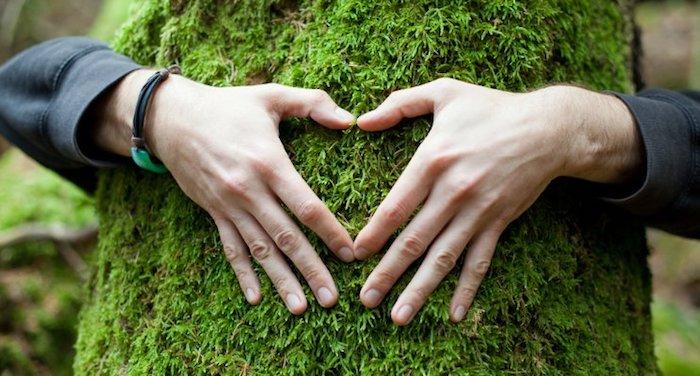 Umweltschutz, ein Mann, der ein Baum umarmt, Herzen-Zeichen