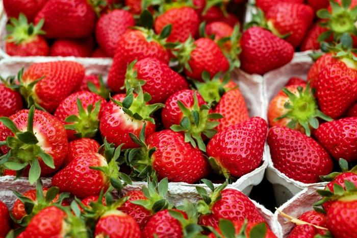 Selbstversorger-Garten, Erdbeeren selber anbauen, BIO Lebensmittel, Tipps für Hobbygärtner