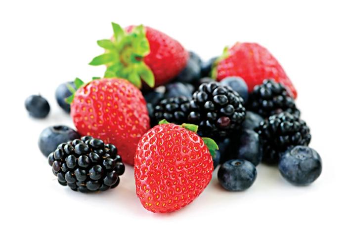 frische Beeren aus dem eigenen Garten, Obst und Gemüse selber anbauen, Tipps für Hobbygärtner
