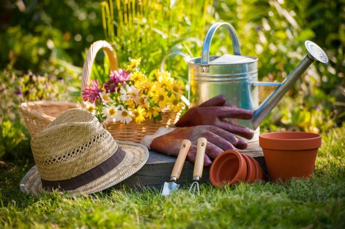 Die wichtigsten Gartengeräte, Tipps für Hobbygärtner, Obst und Gemüse selber anbauen