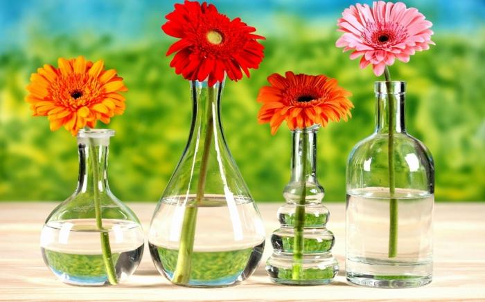 tolle Hintergrundsbilder mit Blumen, Gerbera in verschiedenen Nuancen in Glasvasen, vier Farben