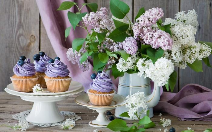 schöne Hintergrundsbilder mit Blumen, Cupcakes mit lila Creme und Blaubeeren, Flieder in Porzellanvase