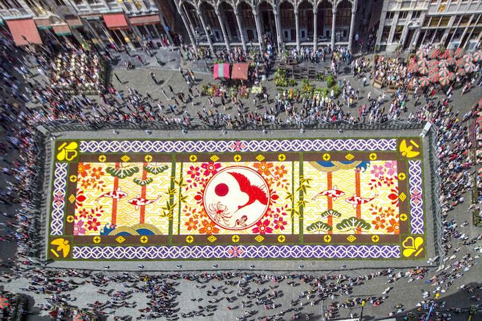 teppich aus natürlichen blumen begonien belgien brüssel festival der blumen kultur