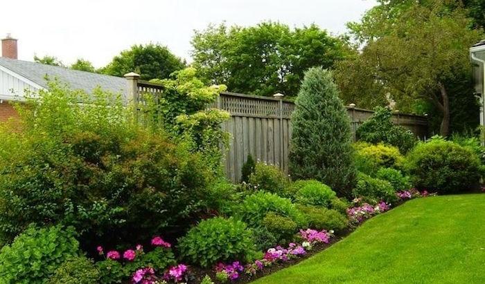 pflegeleichter garten mit vielen grünen büschen und rosa blumen