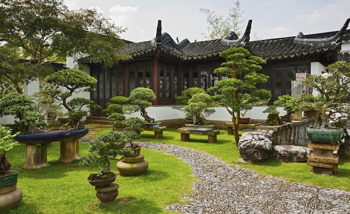 gartengestaltung beispiele, großer hintergarten mit dekorativen bäumen