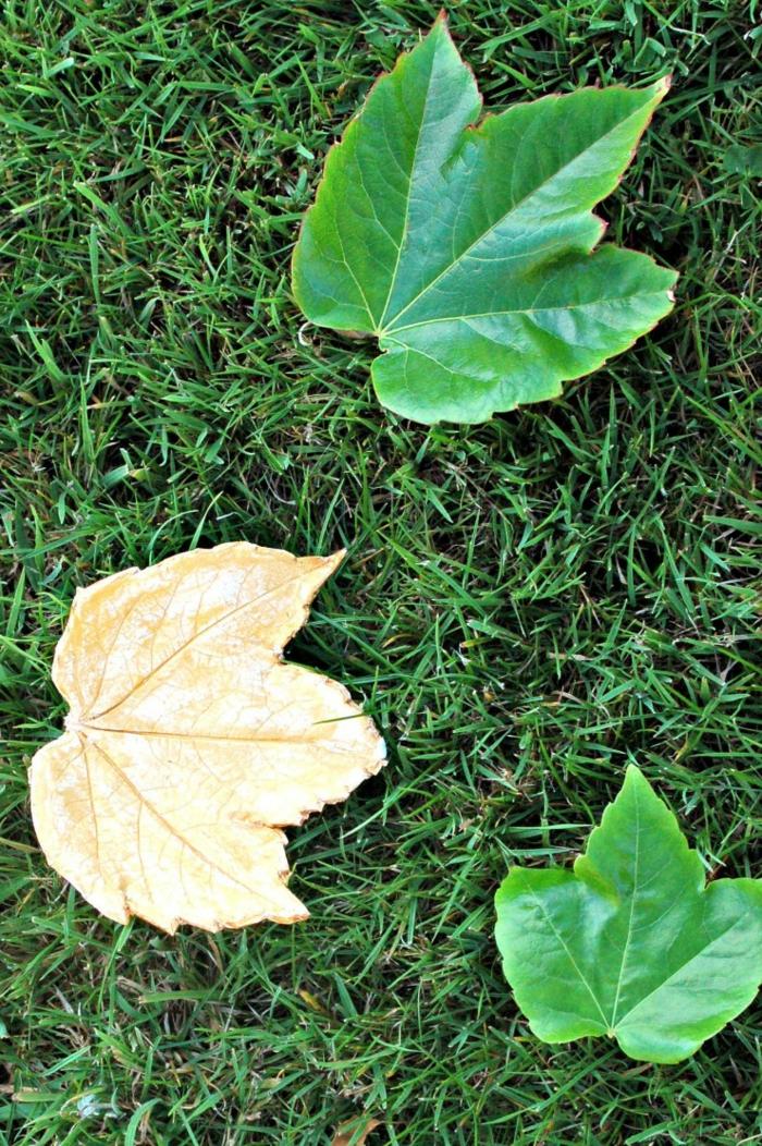 Herbstblätter aus Lehm selber machen, DIY Idee für Kinder und Erwachsene, einfach und effektvoll