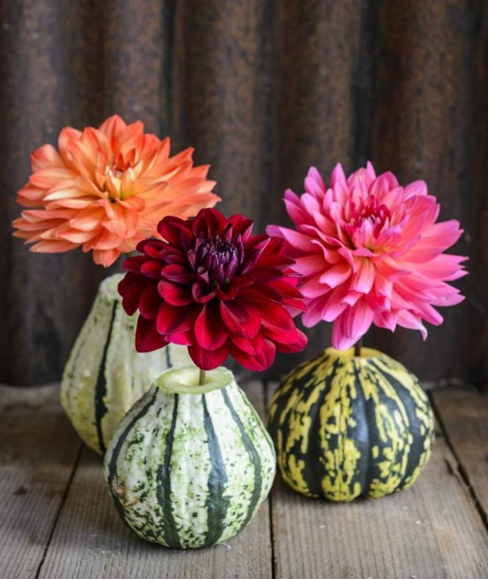 Vasen uns Kürbissen selber machen, wunderschöne Chrysanthemen in drei Nuancen, den Herbst nach Hause holen