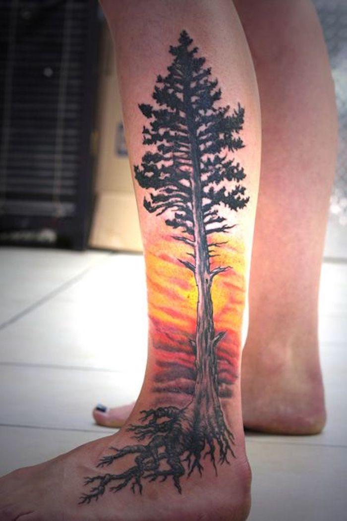 ein hoher Baum beim Sonnenuntergang, Baum des Leben am Bein