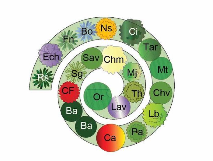 werfen sie einen blick auf diese idee zum thema kräuterspirale mit verschiedenen grünen kräutern - eine tolle idee zum thema gartengestaltung
