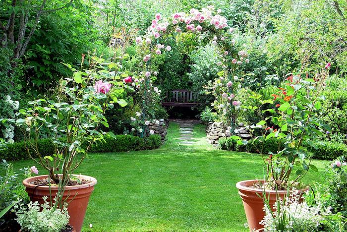 gartengestaltung kleine gärten, gartendekoration mit rosen, gartenpflanzen