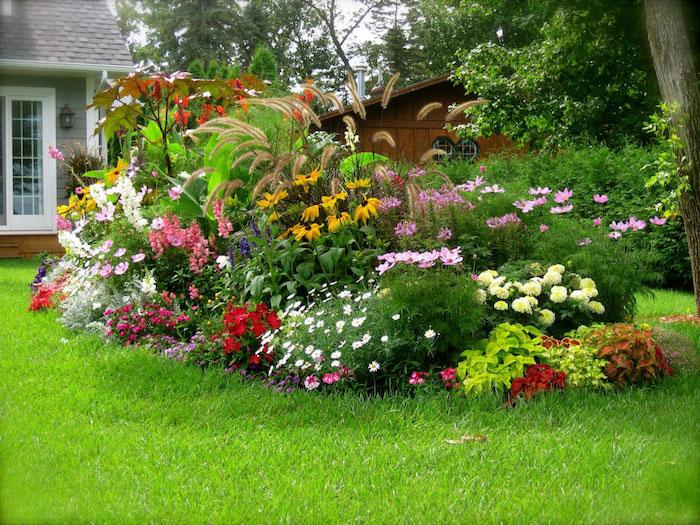 gartengestaltung kleine gärten, raigras und vielen bunten blumen