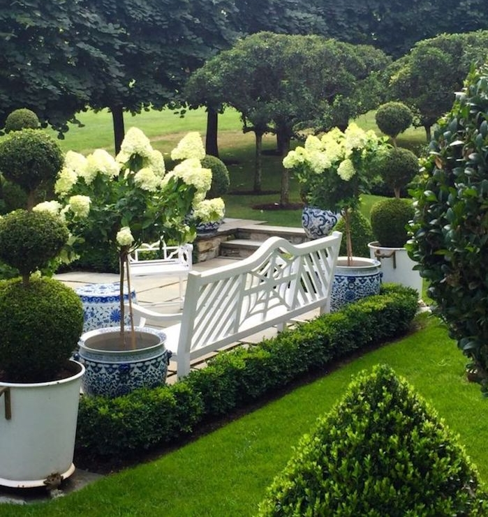 vordergarten pflegeleicht gestalten, gartendesign mit grünen büschen und bäumen
