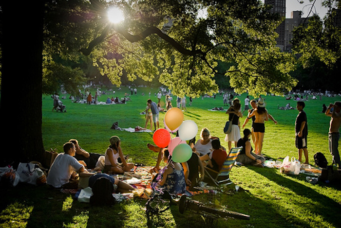 Picknick, mit Freunden im Park, New York City, Sonnenuntergang