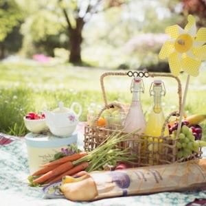 Das Picknick - ein Vergnügen für die Sinne und die Seele
