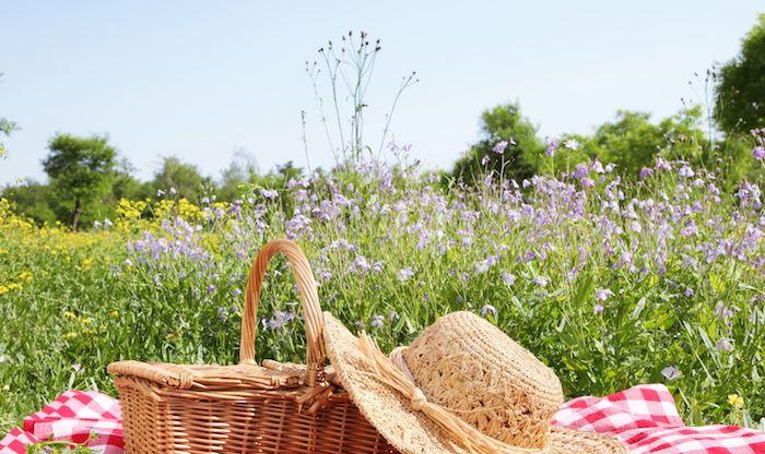 auf der Blumenwiese, Karodecke in Rot und Weiß, Strohhut