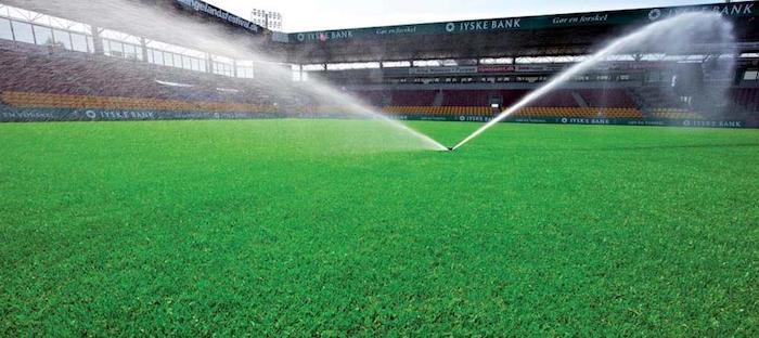 Rasenpflege: Rasenteppich pflegen, Rasen gießen, leeres Fußballstadion