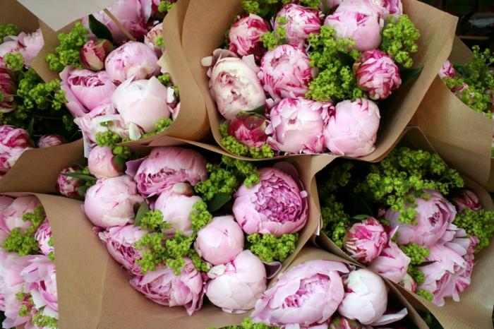 Pfingstrosensträusse, mit Papier verpacken, rosafarbene Blüten, Blumen verschenken