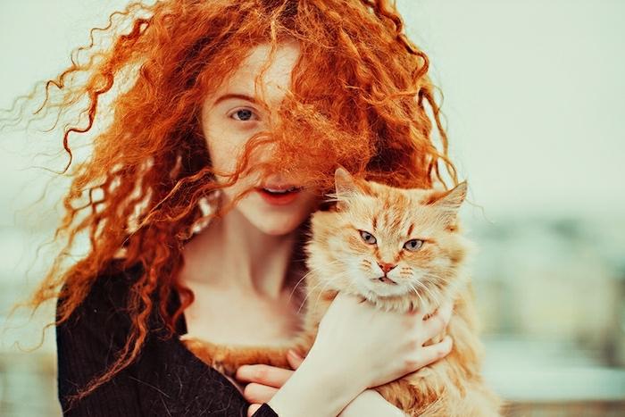 naturrote Haare, schöne Locken, helle Haut, süße Katze, ginger Freunde, natürliche Schönheit