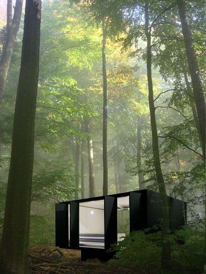 hier ist ein schönes schwarzes container haus im wilden grünen wald mit großen bäumen und grünen blättern