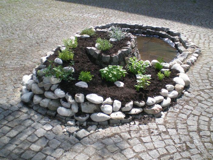 eine sehr schöne kleine kräuterspirale mit verschiedenen grünen pflanzen und weißen steinen