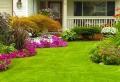 Rasen und Rasenpflege: schöner Rasenteppich ganzjährlich
