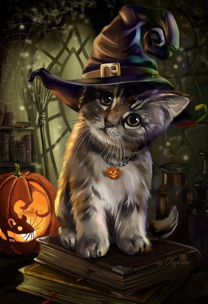 eine kleine Katze mit einem Hexenhut, ein Mäuschen in dem Kürbis geschnitzt - Halloween Hintergrund