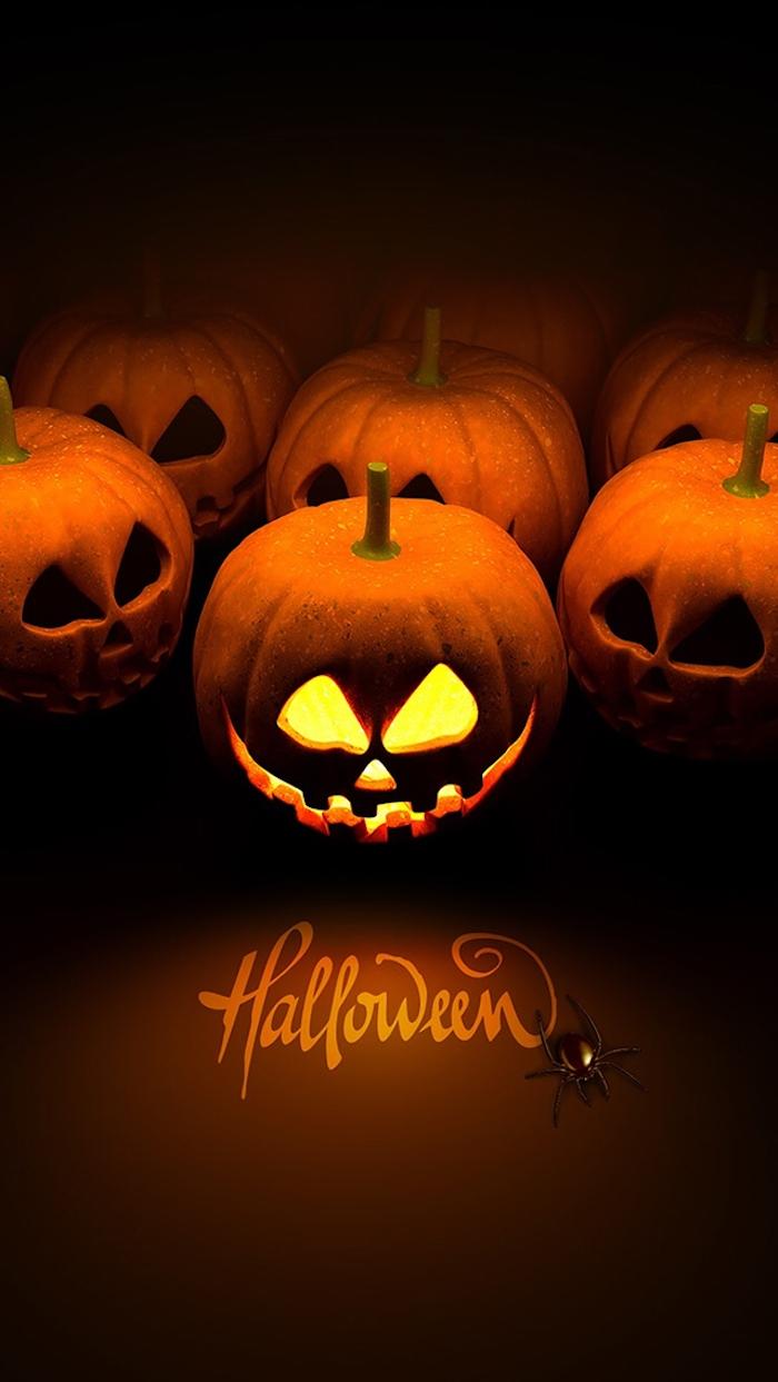 Halloween Hintergrund mit dem Namen des Festes Halloween Kürbisse und eine Spinne