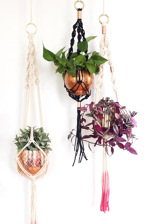 makramee blumenampel schöne idee blumentöpfe goldene töpfe weiß und rosa deko pflanzen