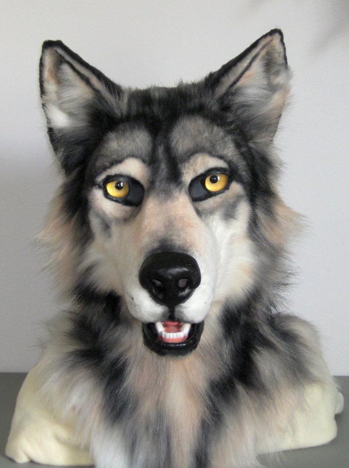 eine Maske von einem grauen Wolf wie echt - Halloween Maske selber machen
