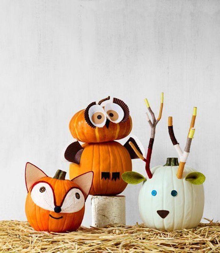 vier Kürbisse wie die Köpfe von Waldtieren - Halloween Deko selber machen