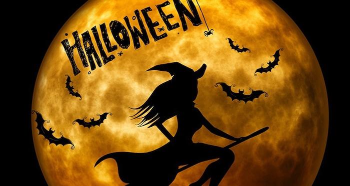 Halloween Vollmond und eine Hexe mit einem Hexenbesen fliegt, eine Spinne die hängt