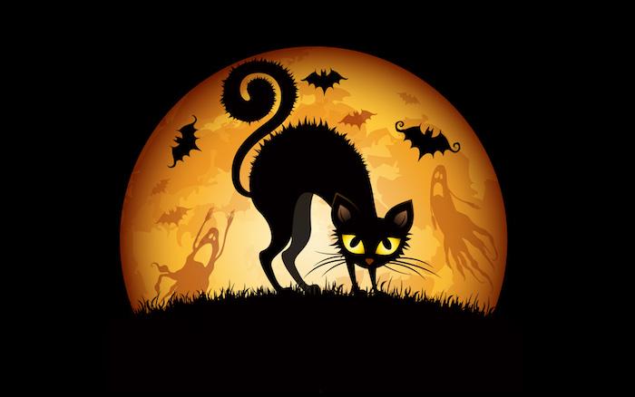 eine schwarze Katze mit dem Vollmond am Hintergrund - Bilder Halloween