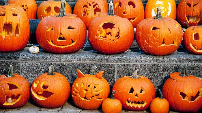 Halloween Bilder von einer Menge Kürbisse mit gruseligen Gesichtern