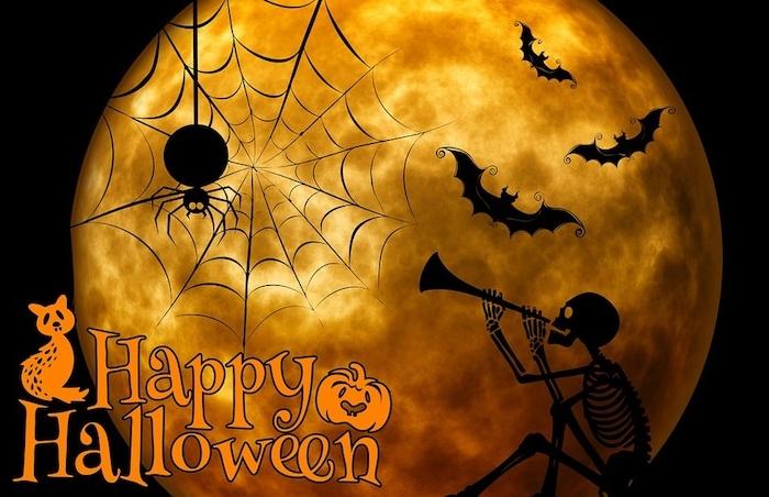 ein Vollmond eine Spinnennetz und die Wörter Happy Halloween - Halloween Hintergrund