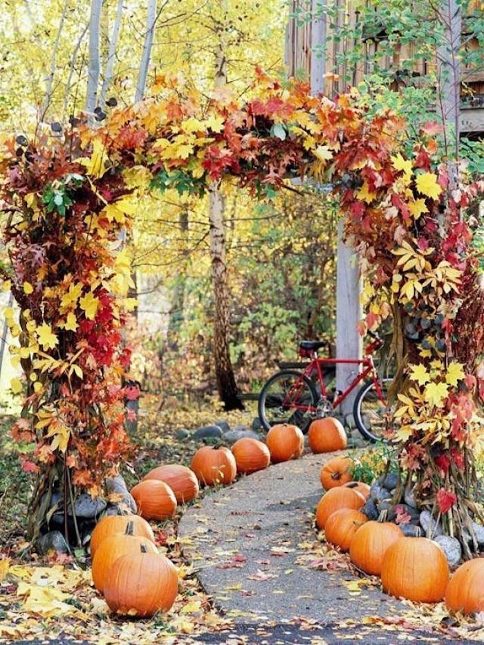 Garten im Herbst pflegen, Gartenweg aus Asphalt, große Bäume vor dem Haus