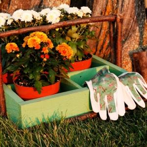 Garten im Herbst: Das ist nun zu erledigen