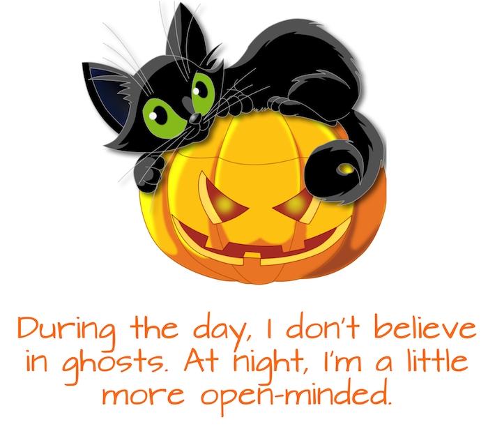 tolles bild mit einem halloween spruch, einem halloween kürbis und einer kleinen schwarzen katze mit grünen augen