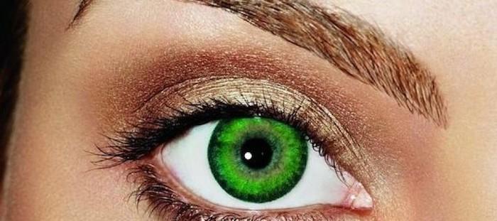 schöne junge Haut mit bräunlichem Teint, ovale Augen, gesättigtes Grün