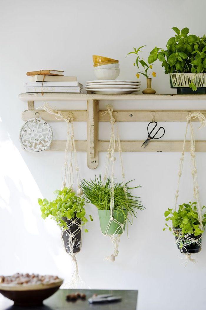 blumen design kräuter hängende ideen für die blumentöpfe grüne farbe in der küche