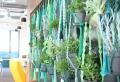 Makramee Blumenampel – DIY Projekte und Deko Ideen zum Inspirieren