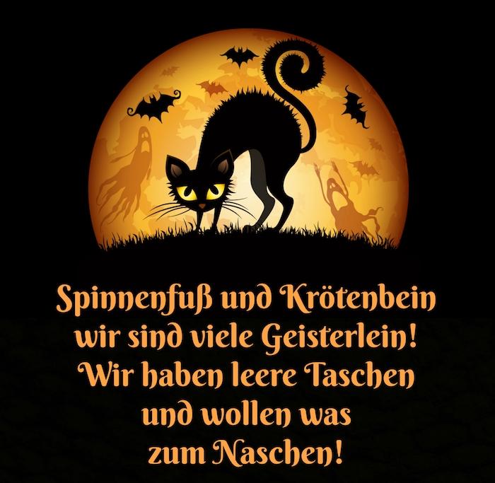 halloween sprüche lustig - hier finden sie ein bild mit einer schwarzen katze, fliegenden schwarzen fledermäusen und einem großen mond