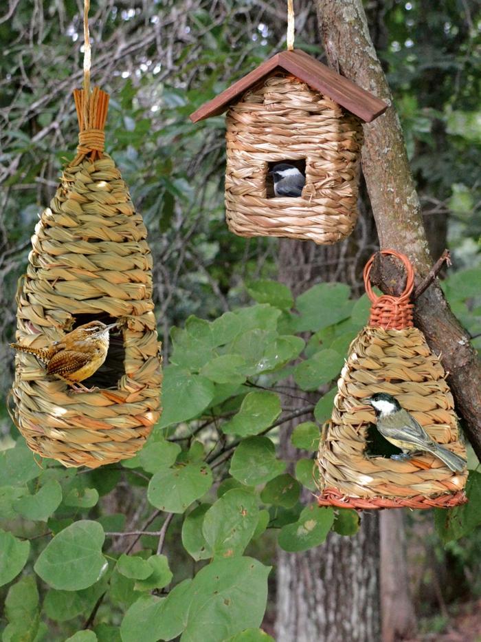 Drei Vogelhäuschen im Landhausstil, am Baum aufhängen, drei Vögelchen fressen Samen