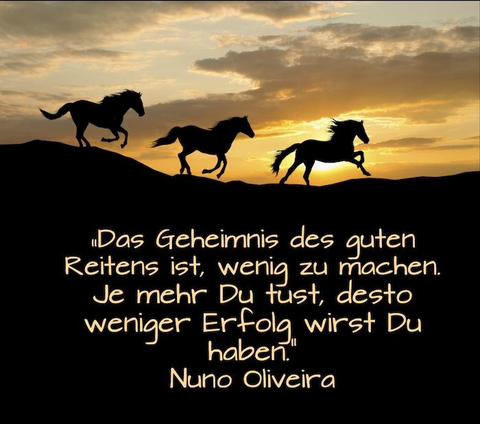 zitat von nuno oliveira und dre schwarze laufende pferde im sonnenuntergang, himmel mit sonne und mit gelben und orangen wolken