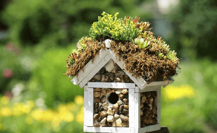 tolles Vogelhäuschen aus Holz, die Wände mit kleinen Steinen dekorieren, Grüne auf dem Dach