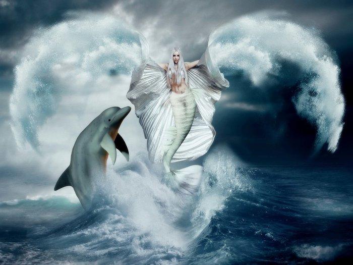 traumhaftes bild mit einem grauen delfin und einer weißen meerjungfrau mit einem weißen rock und weißen flügeln